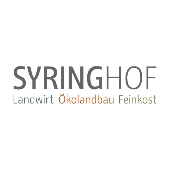 jung und billig werbeagentur syring logo 1